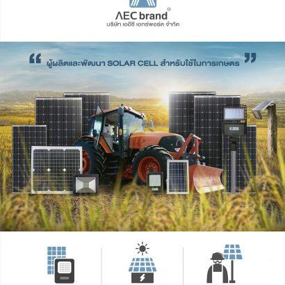 ประวัติบริษัท-AEC-EXPORT-จำกัด-และแบรนด์-AEC-brand-โซล่าเซลล์คุณภาพสูงของไทย
