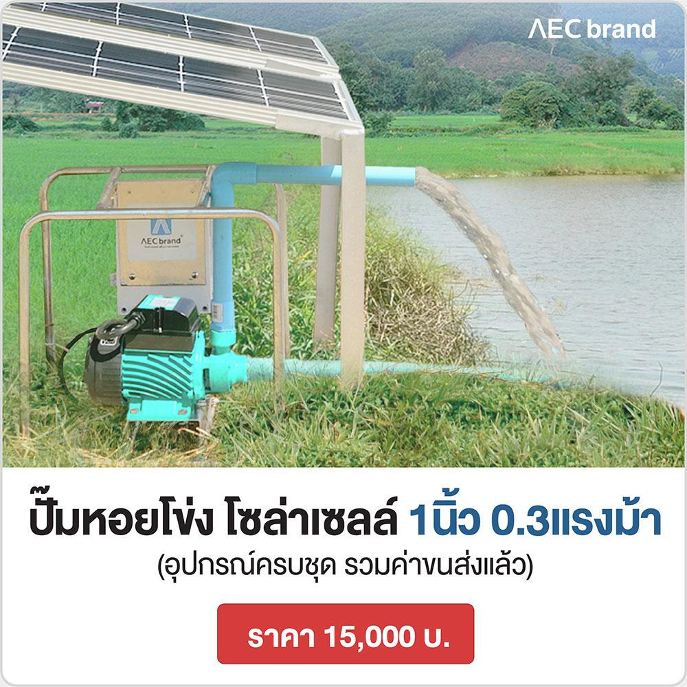 ราคา-ปั๊มน้ำ-หอยโข่งโซล่าเซลล์-1นื้ว-AECbrand